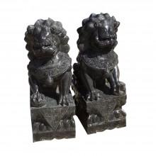 Fu Dog Paar Tempel Löwen Wächter Marmor schwarzer Marmor Bildhauerarbeit