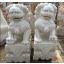 Asien Drachen Paar Skulptur sitzend auf Sockeln weißer Marmor